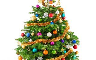 Quiggins Christmas Hampers